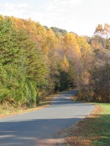 PH-Fall-Road